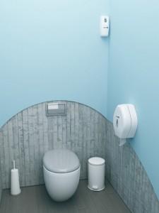 dizajn_tualetnoj_komnaty-01-300x245 Дизайн туалетной комнаты