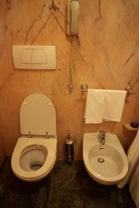 Вариант установки биде в туалете