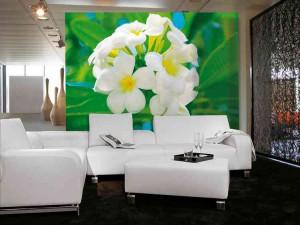 Фотообои с белыми цветами фото