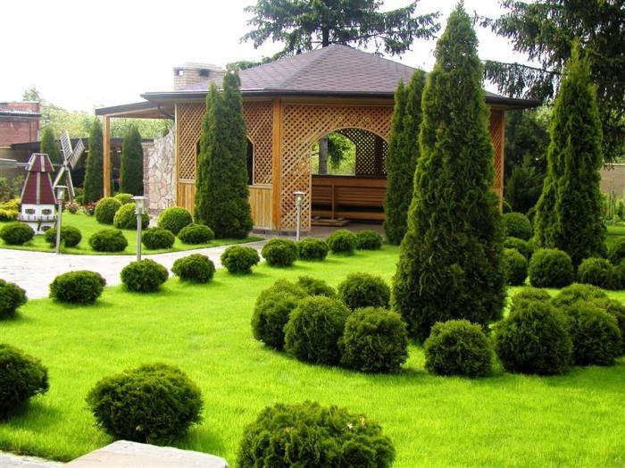 Ландшафтный дизайн - разработка и воплощение