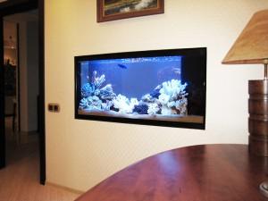 akvarium-300x207 Как сделать аквариум в стене