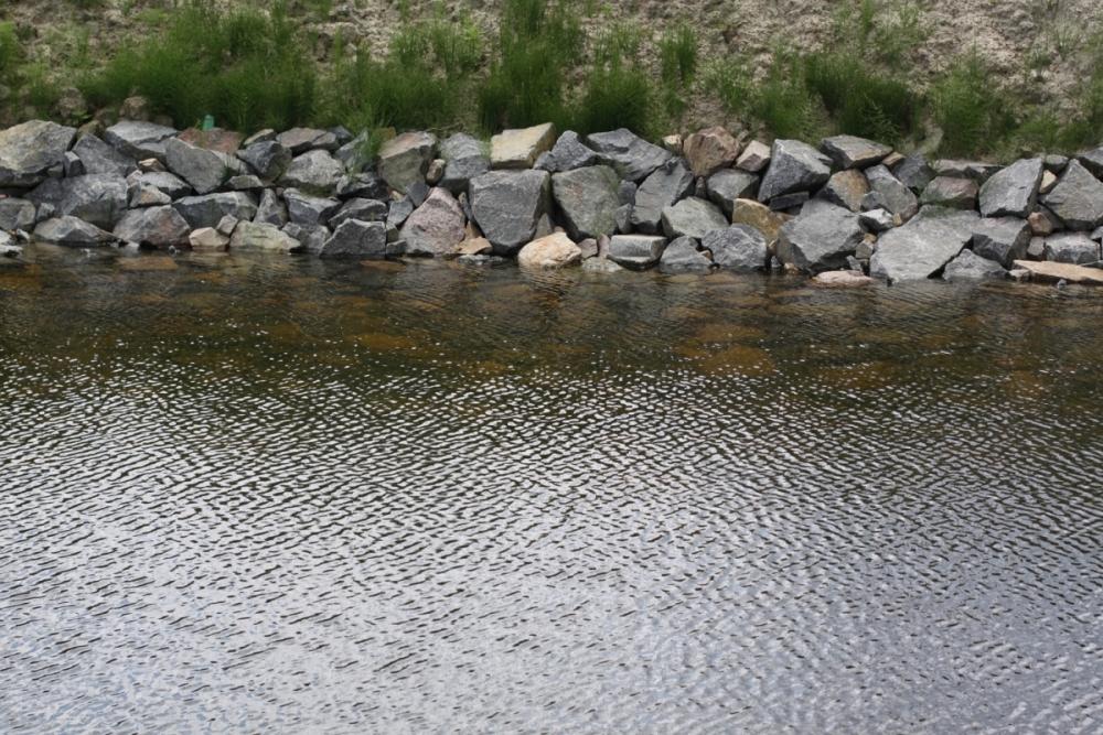 Дача и пруд – понятия совместимые