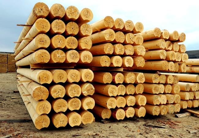 399634014788714v-srub-doma-v-lapu-s-verandoj-3h5-7541897 Как срубить сруб в чашу правильно и инструменты для рубки